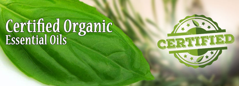 Organic Essential Oils India,Certified Essential Oils