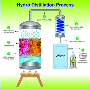 Hydro distillation process